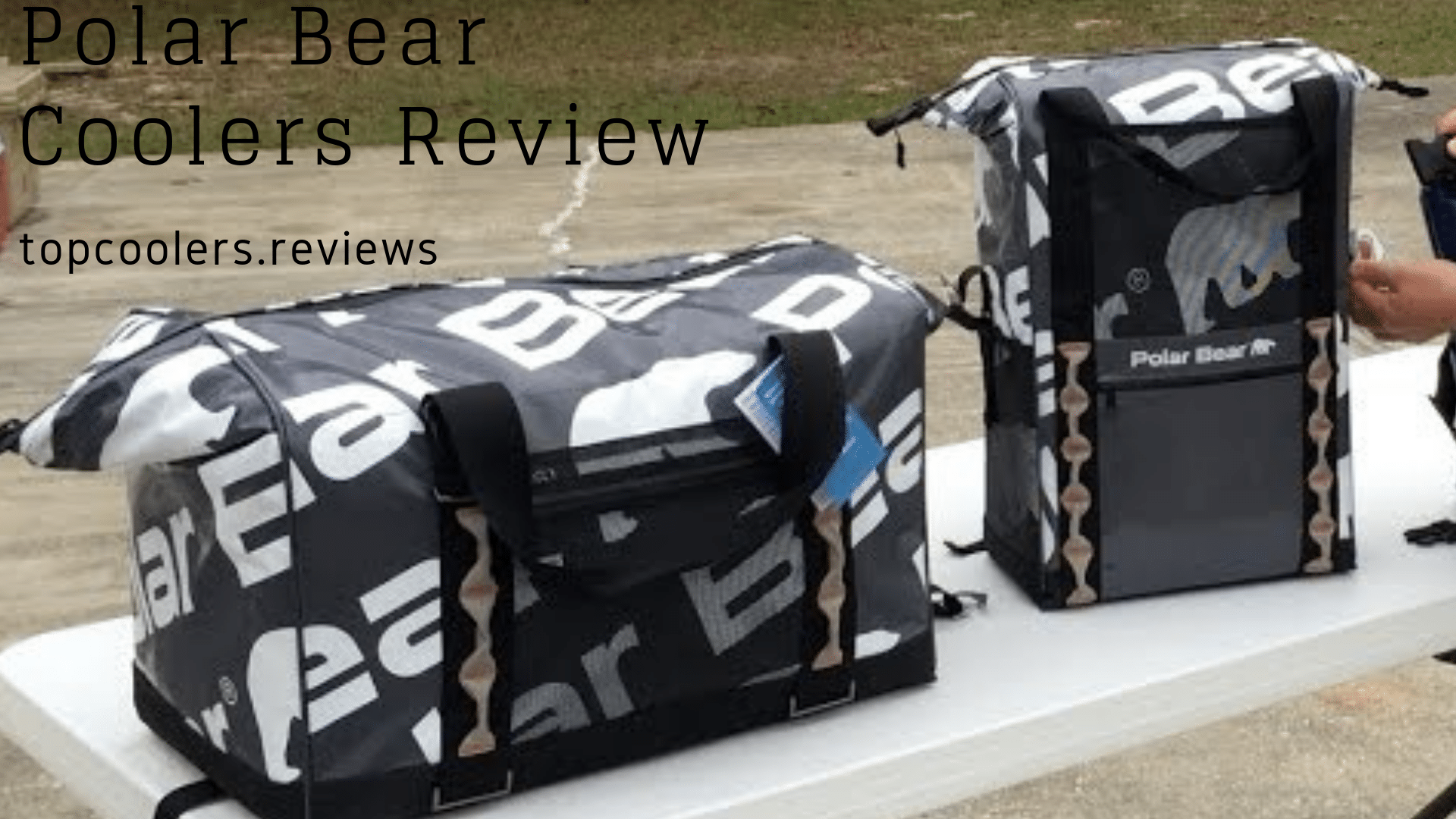 Polar Bear cooler, Polar Bear cooler review