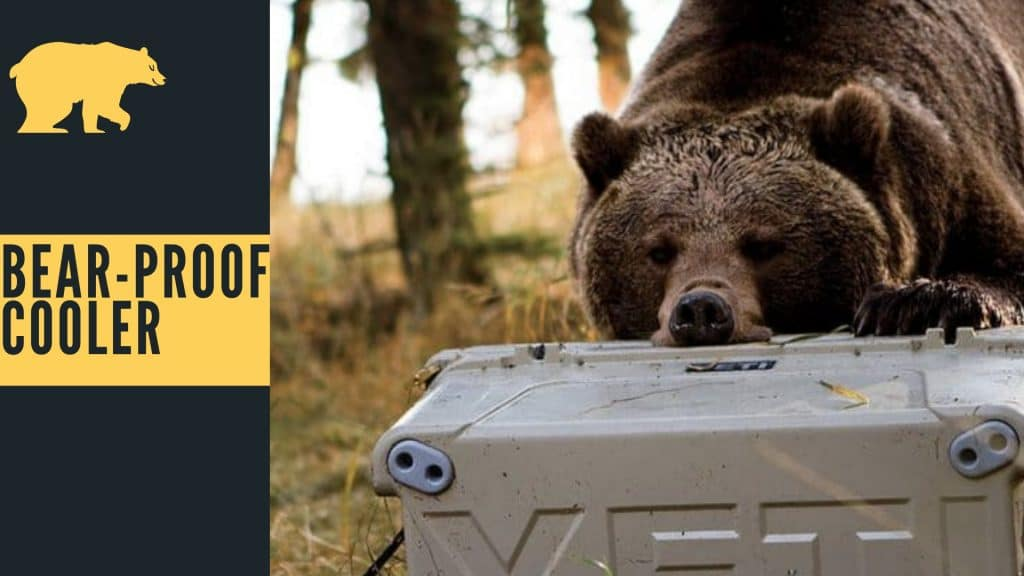 Bear proof cooler, Bear proof cooler reviews, coolers by bear proof