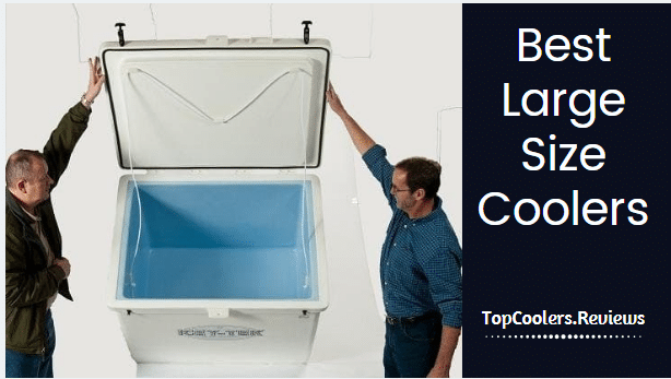 Large Cooler Reviews