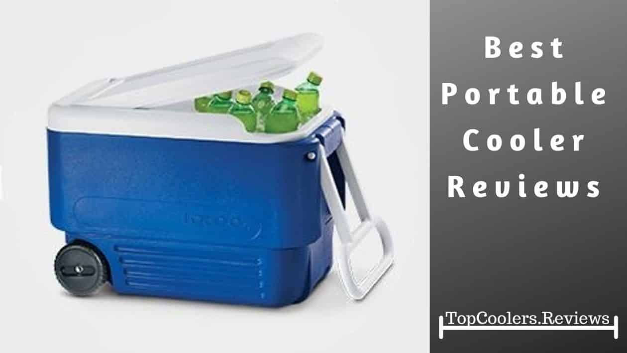 Portable Cooler Reviews